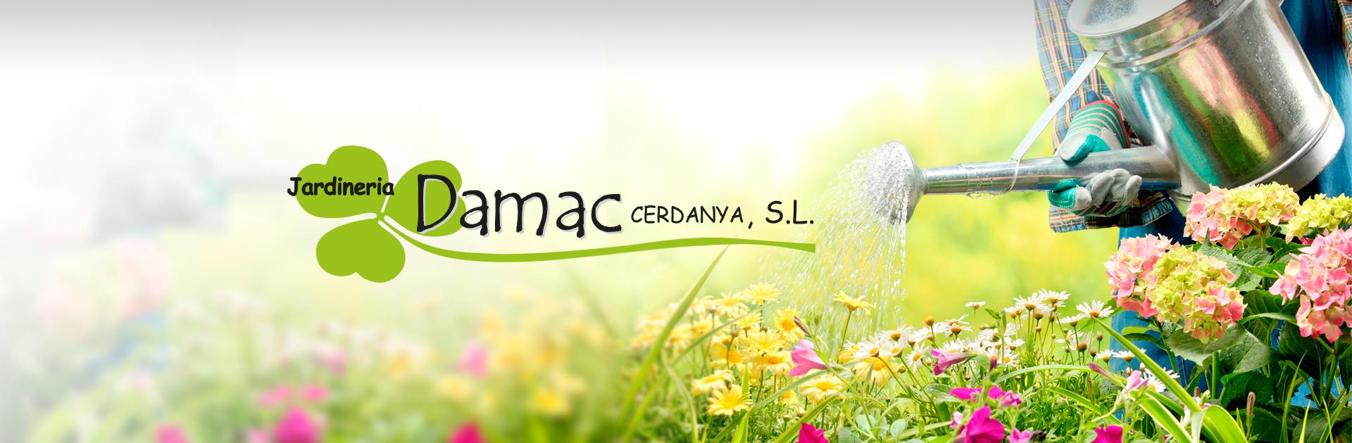 Banner Jardineria Damac