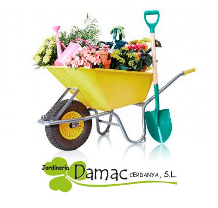 Jardineria Damac a Cerdenya